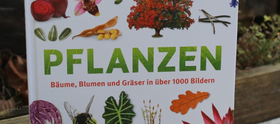 buchcover pflanzen