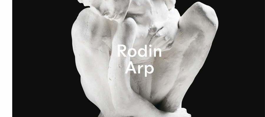 cover rodin arp